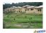 Ikogosi Warm Springs Resort Limited